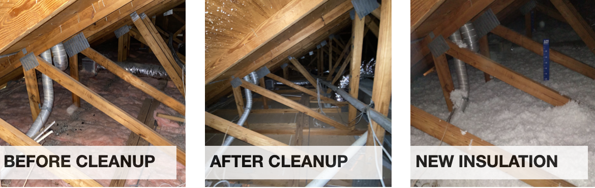 All Thermo Before And After Attic Restoration